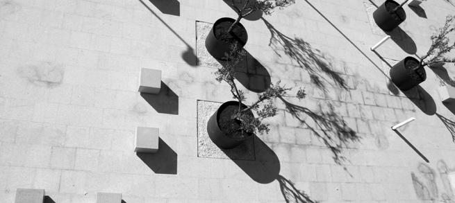 slider-ficha-arquitectura1
